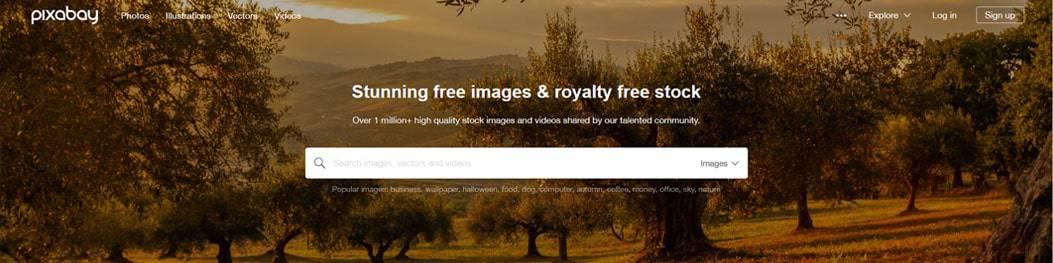 פיקסביי - מאגר תמונות להורדה בחינם
